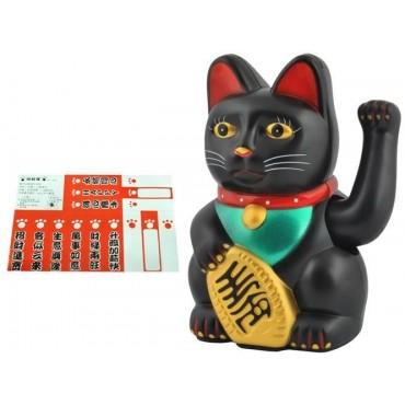 Kot chiński - czarny